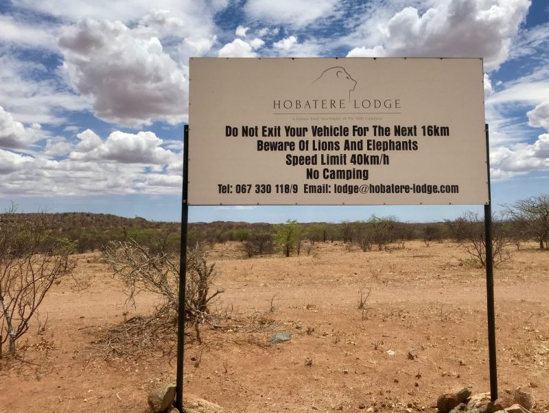 Alone in Namibia with Martha Gellhorn
